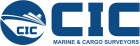 Logo Marine & Cargo Surveyor